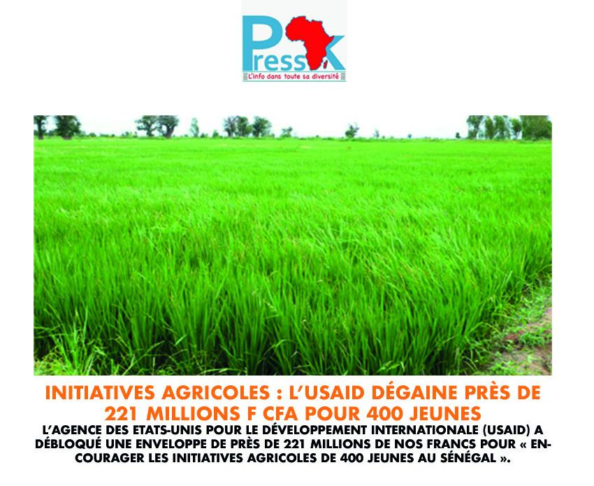 Abondance en riz: pourquoi l'espoir est permis?